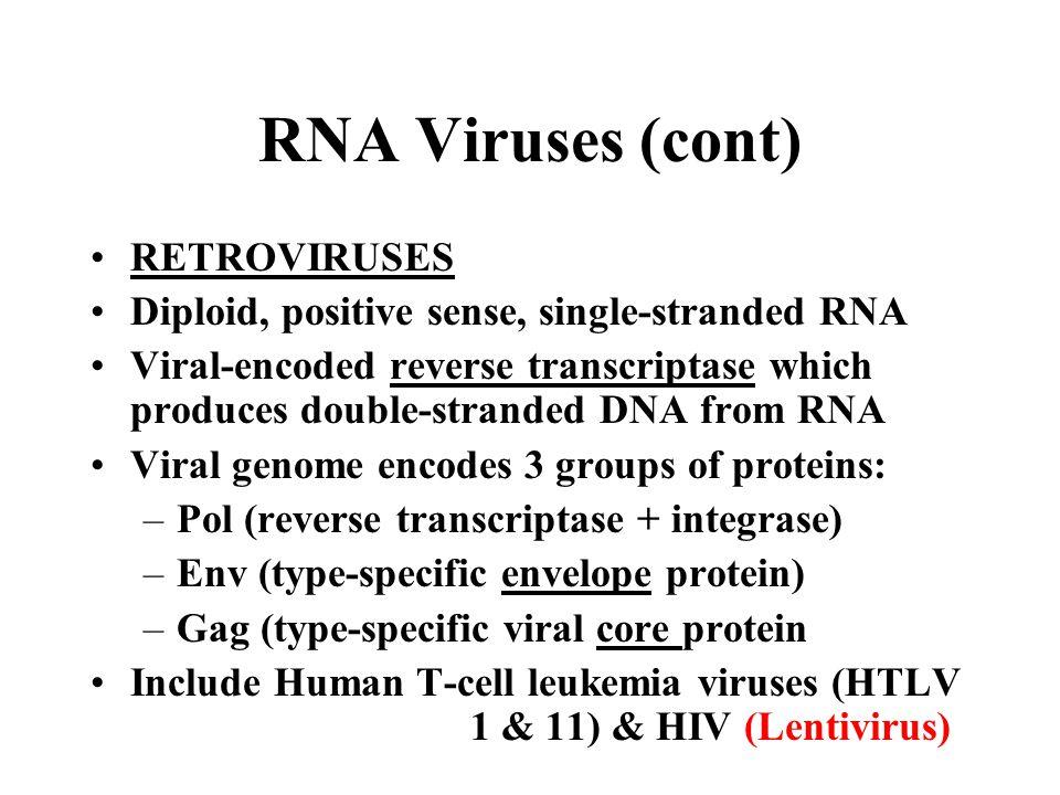 RNA Viruses (cont) RETROVIRUSES