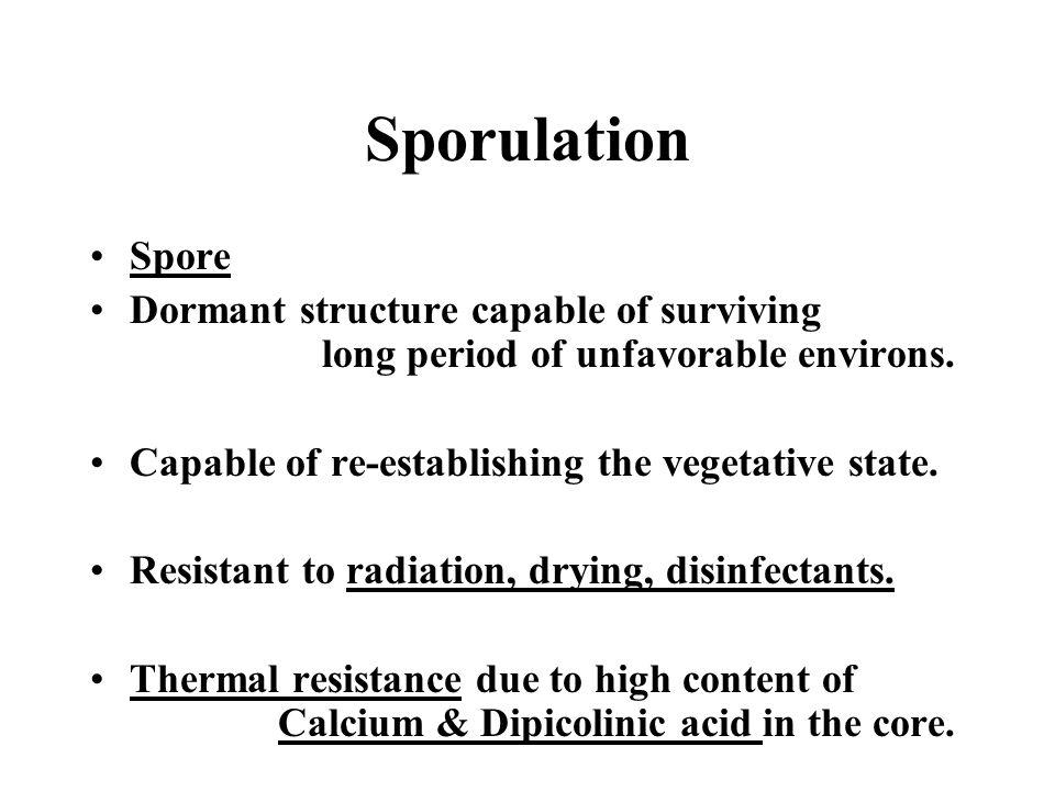 Sporulation Spore. Dormant structure capable of surviving long period of unfavorable environs.