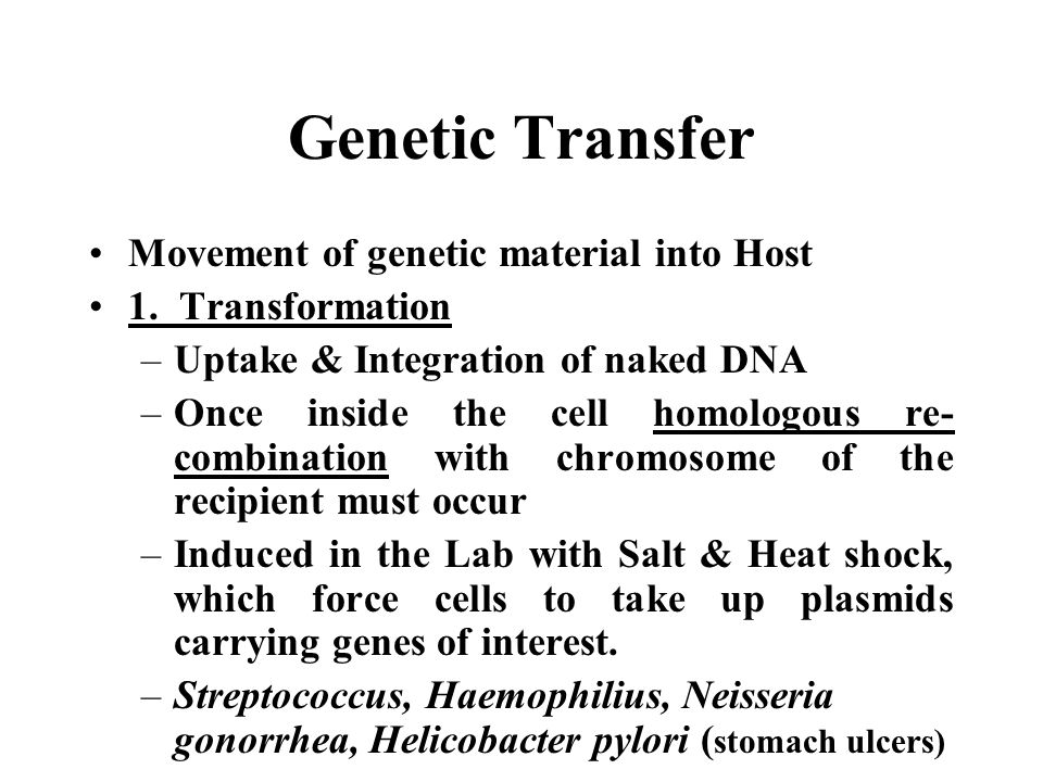 Genetic Transfer Movement of genetic material into Host