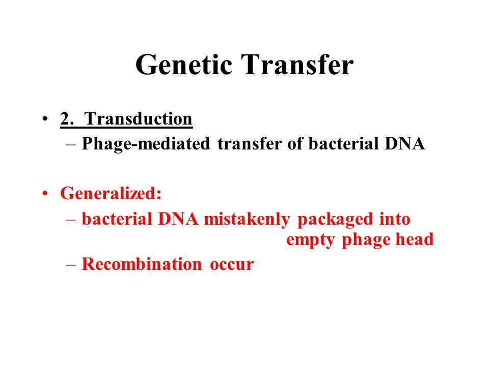Genetic Transfer 2. Transduction