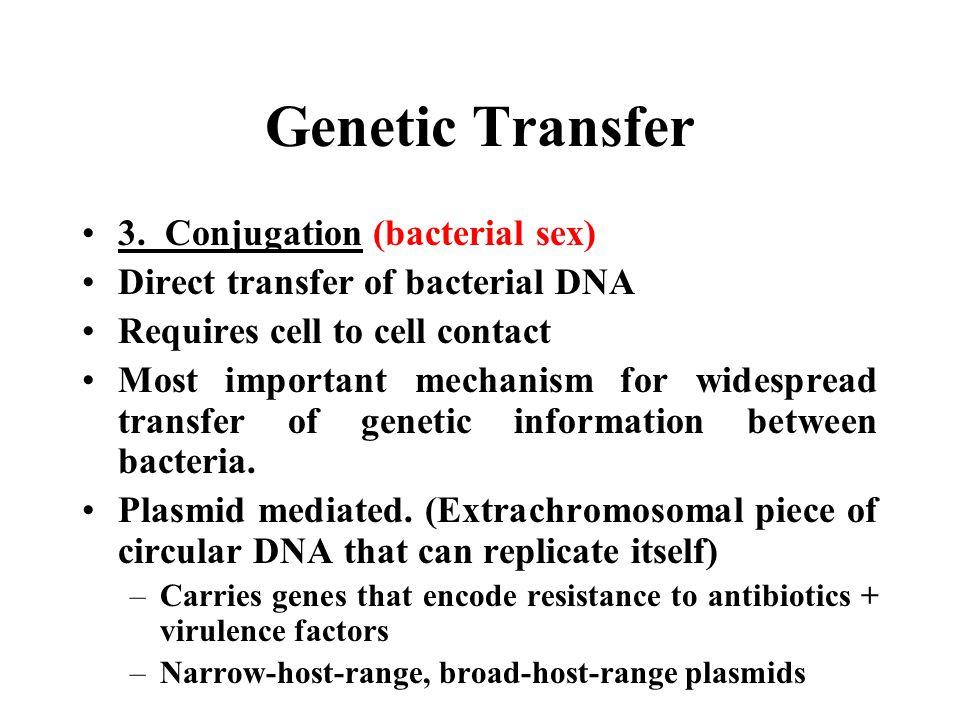 Genetic Transfer 3. Conjugation (bacterial sex)