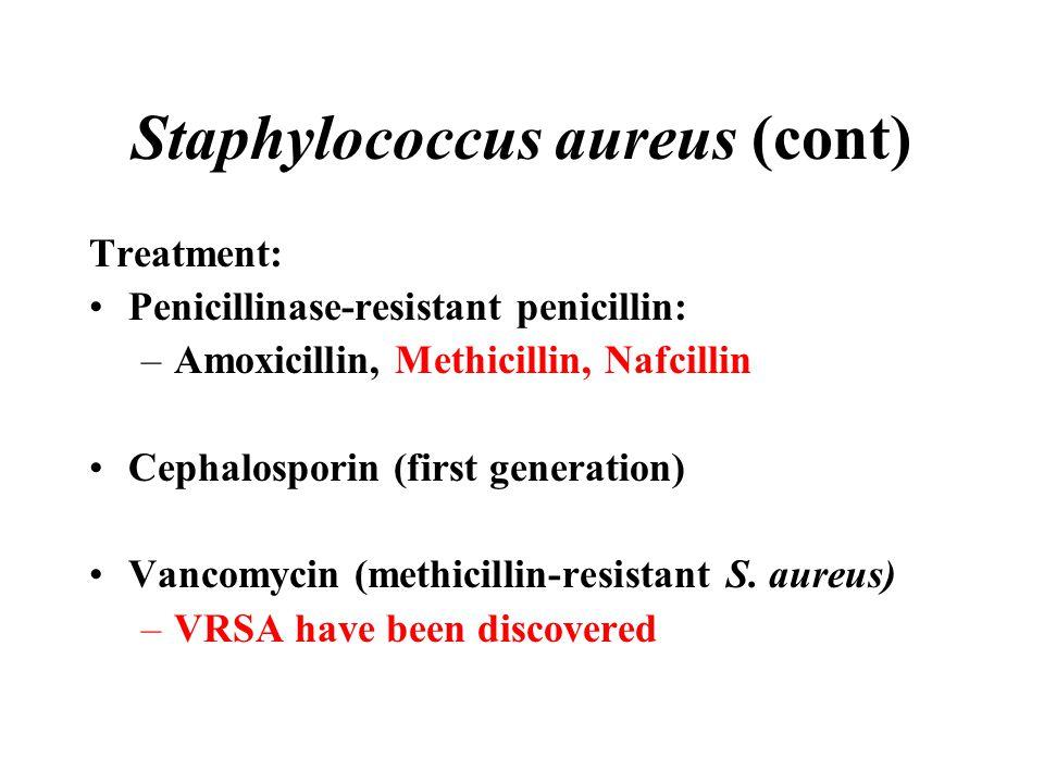 Staphylococcus aureus (cont)
