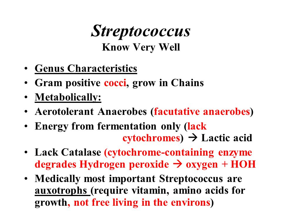 Streptococcus Know Very Well