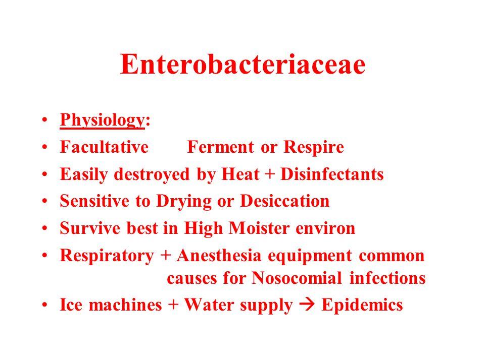 Enterobacteriaceae Physiology: Facultative Ferment or Respire