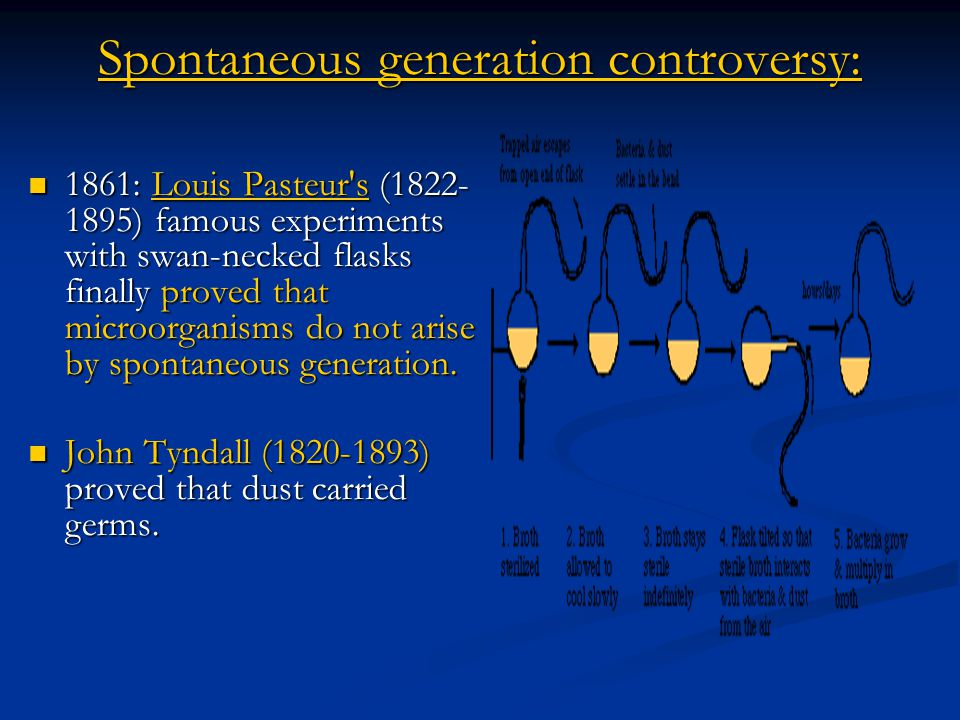 Spontaneous generation controversy:
