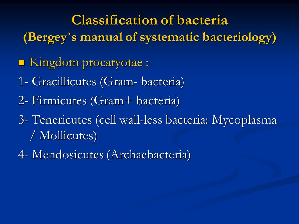 Classification of bacteria (Bergey`s manual of systematic bacteriology)