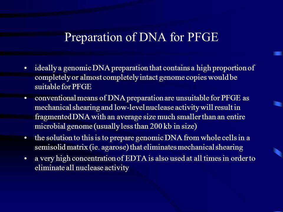 Preparation of DNA for PFGE