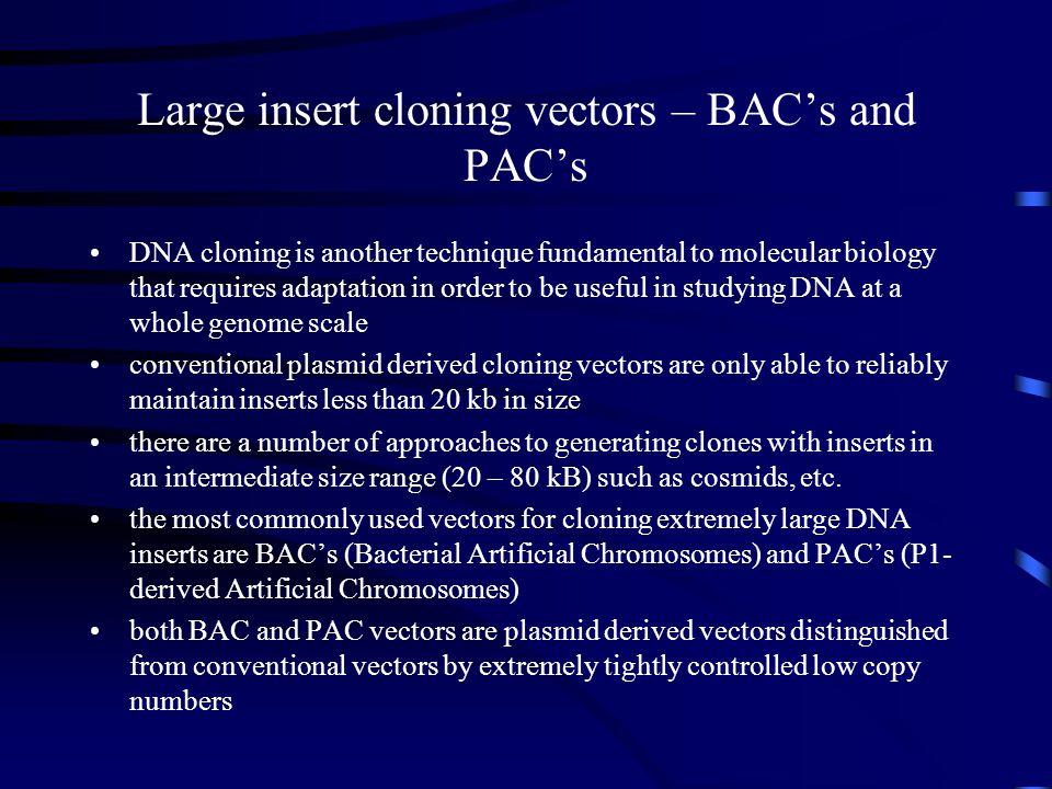 Large insert cloning vectors – BAC's and PAC's