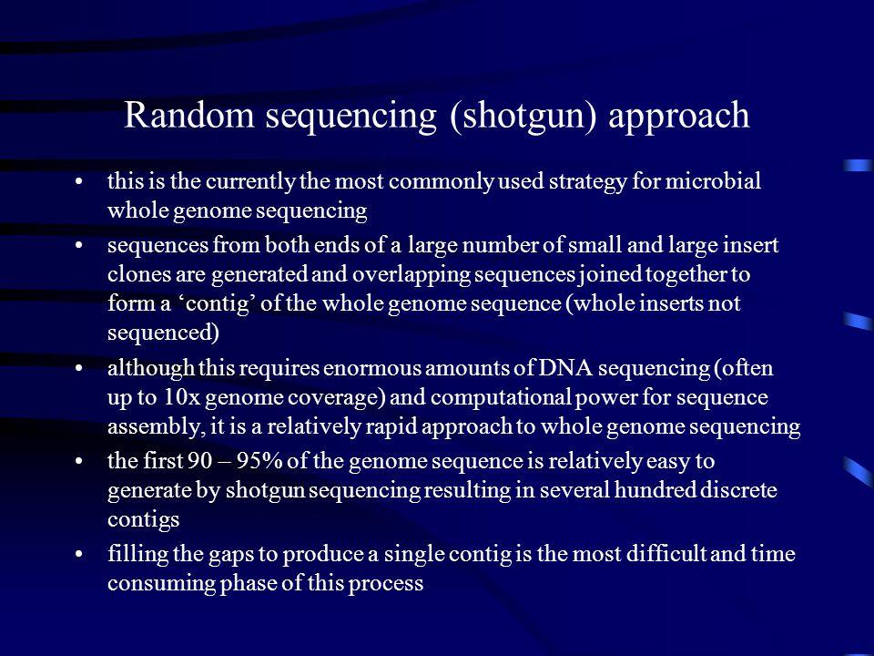 Random sequencing (shotgun) approach