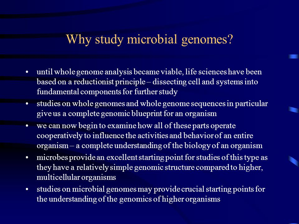 Why study microbial genomes