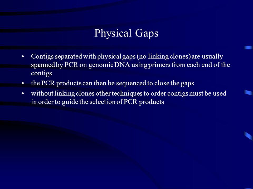 Physical Gaps