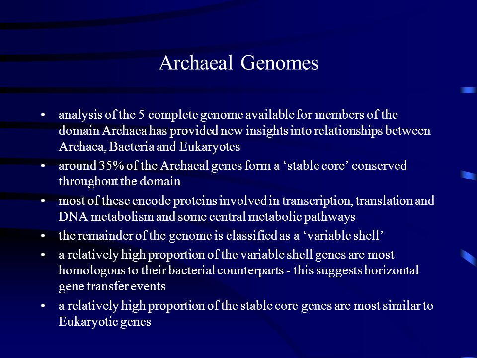Archaeal Genomes