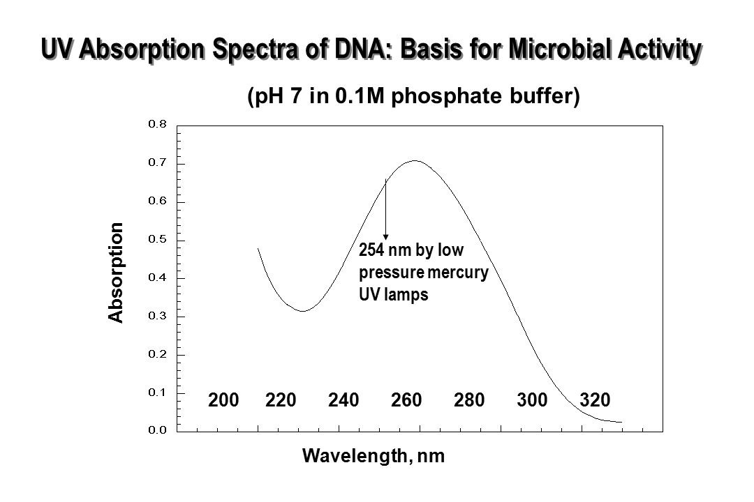 UV Absorption Spectra of DNA: Basis for Microbial Activity