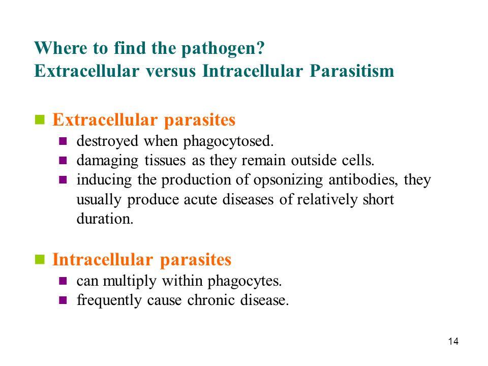Where to find the pathogen