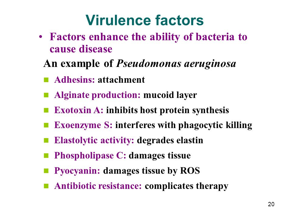 Virulence factors Factors enhance the ability of bacteria to cause disease. An example of Pseudomonas aeruginosa.