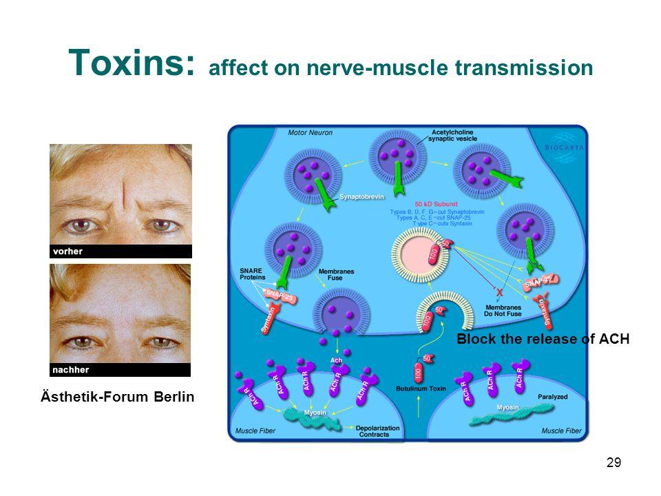 Toxins: affect on nerve-muscle transmission