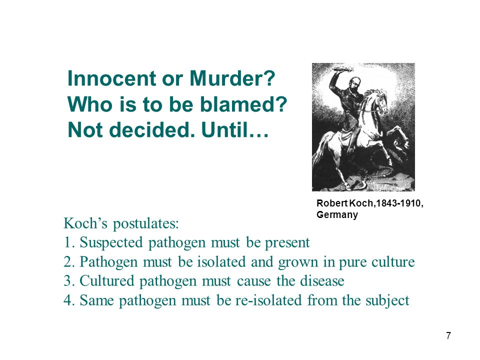 Innocent or Murder Who is to be blamed Not decided. Until…