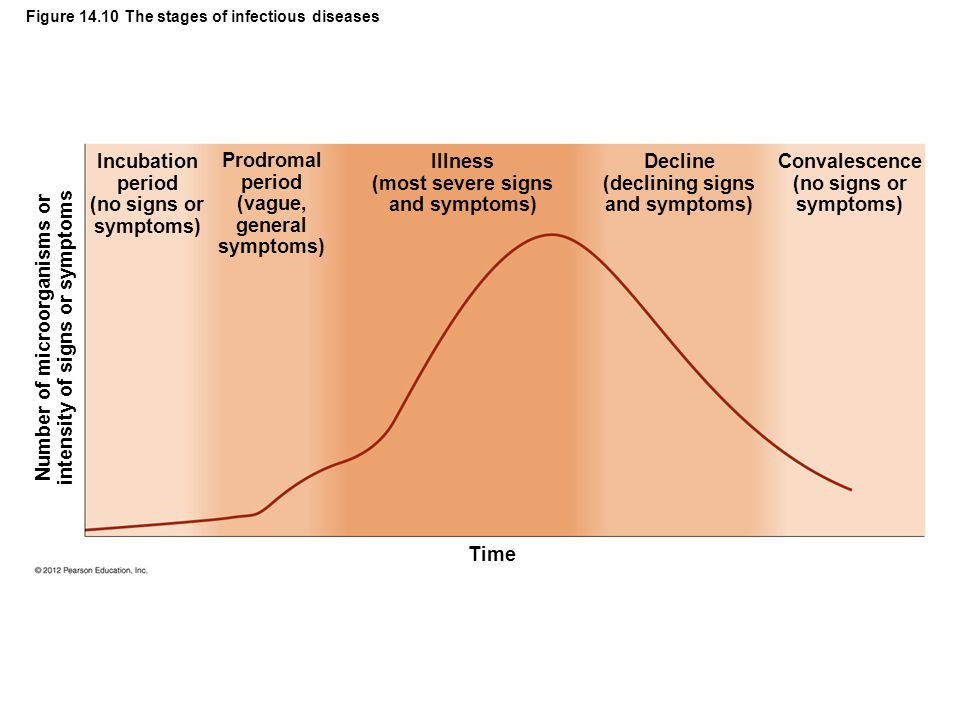 Figure 14.10 The stages of infectious diseases