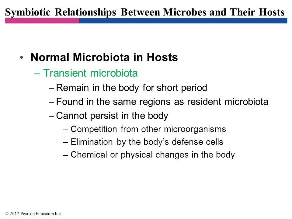 Symbiotic Relationships Between Microbes and Their Hosts