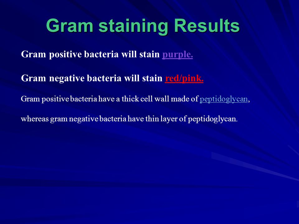 Gram staining Results Gram positive bacteria will stain purple.