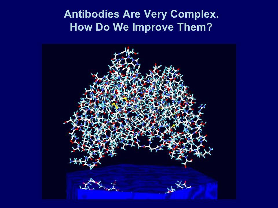 Antibodies Are Very Complex. How Do We Improve Them