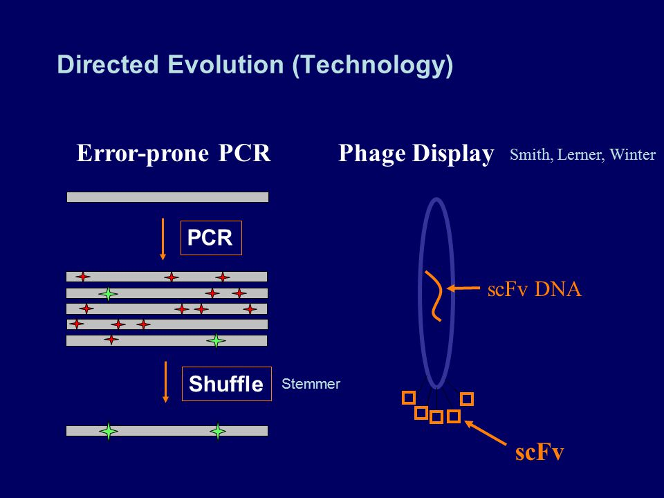 Directed Evolution (Technology)