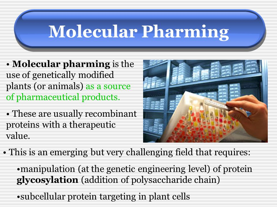 Molecular Pharming Molecular pharming is the use of genetically modified plants (or animals) as a source of pharmaceutical products.