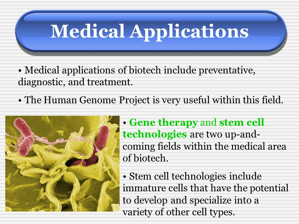 Medical Applications Medical applications of biotech include preventative, diagnostic, and treatment.