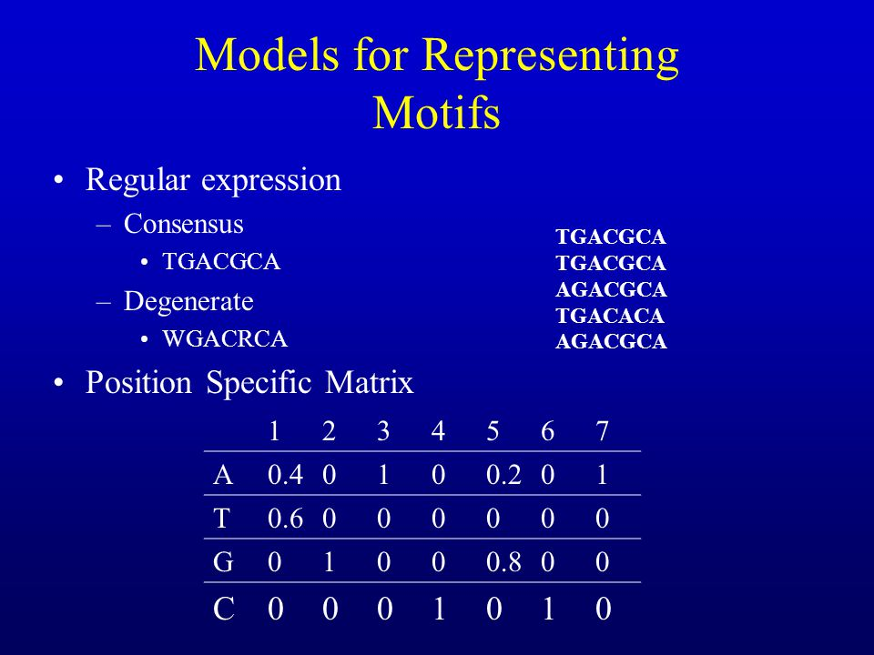 Models for Representing Motifs