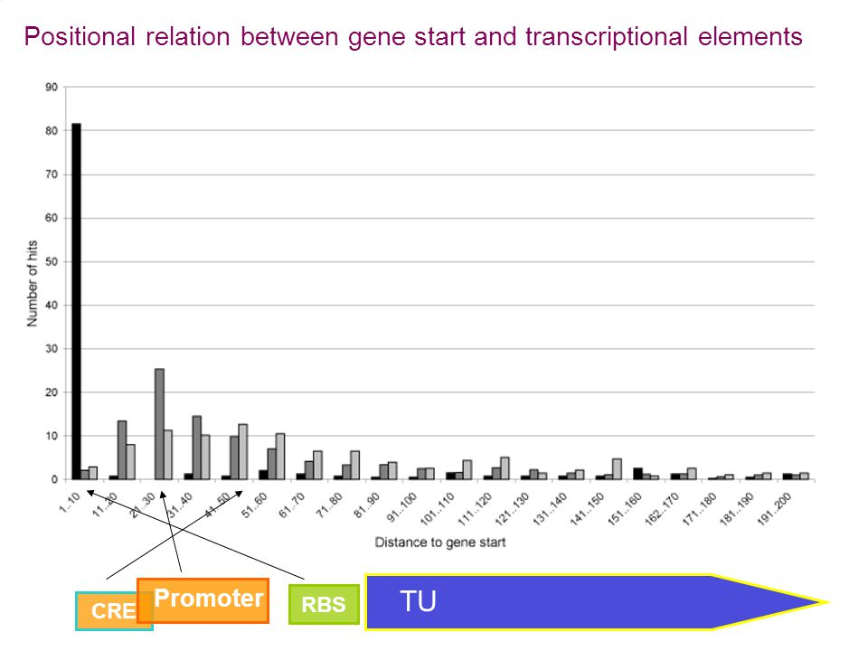TU Positional relation between gene start and transcriptional elements