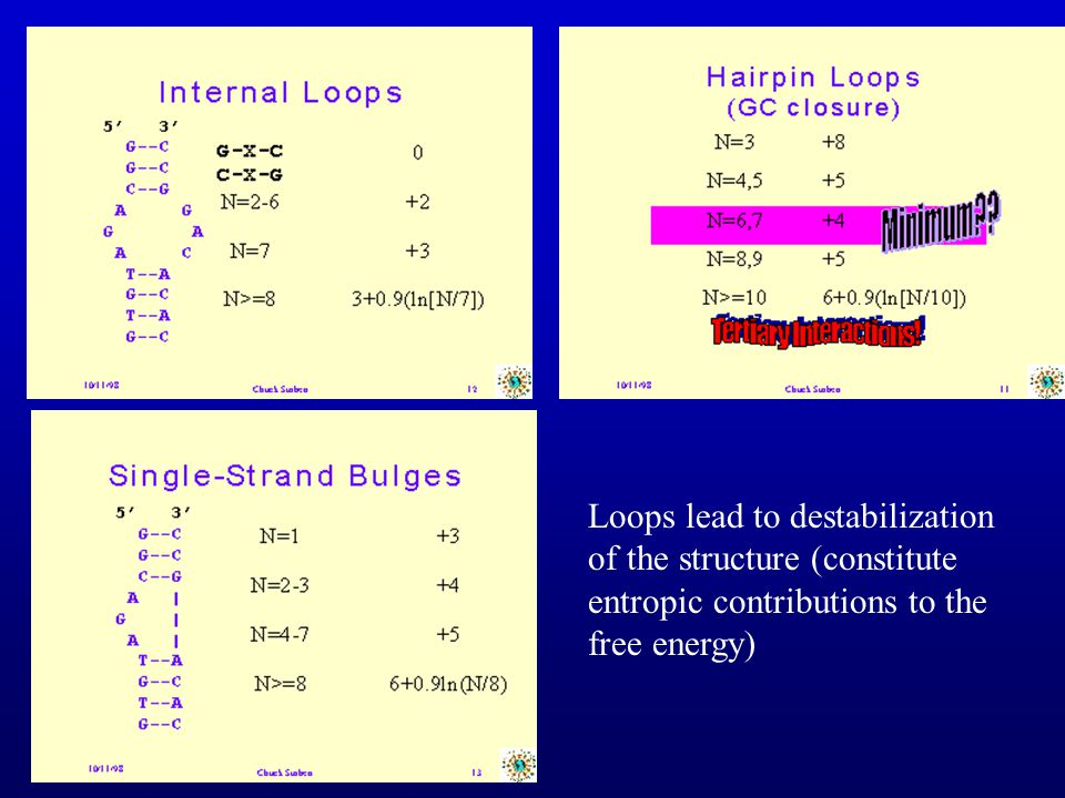 Loops lead to destabilization of the structure (constitute entropic contributions to the free energy)