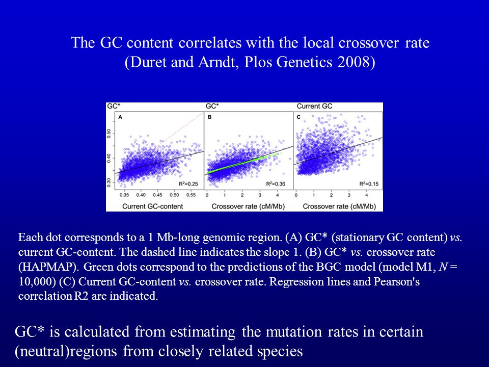 The GC content correlates with the local crossover rate (Duret and Arndt, Plos Genetics 2008)