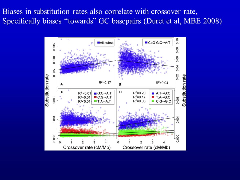 Biases in substitution rates also correlate with crossover rate,