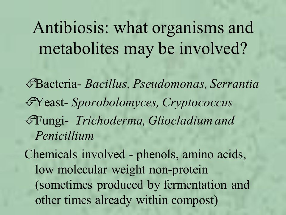 Antibiosis: what organisms and metabolites may be involved