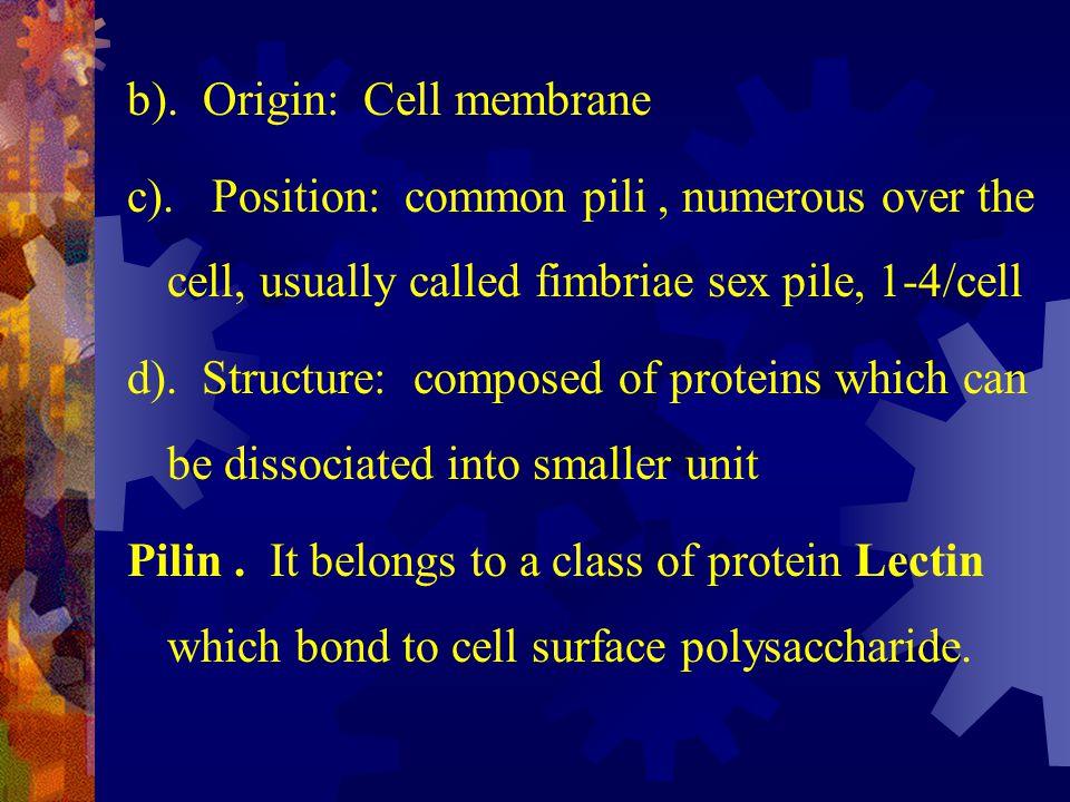 b). Origin: Cell membrane