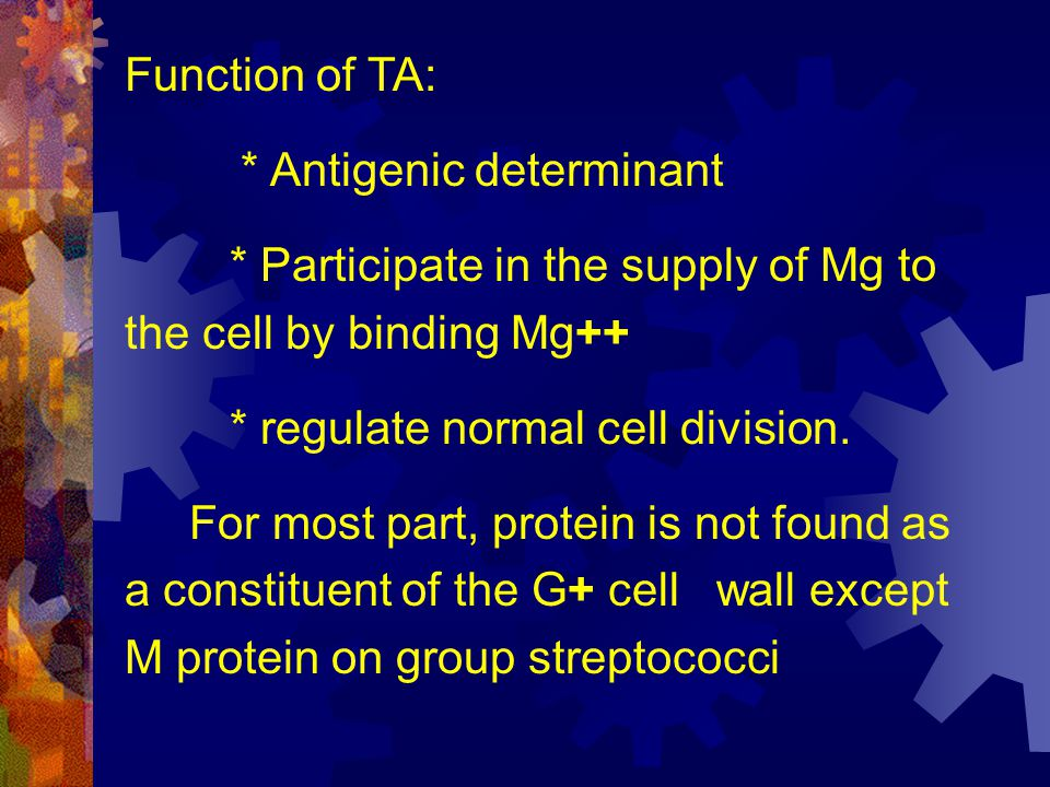 Function of TA: * Antigenic determinant. * Participate in the supply of Mg to the cell by binding Mg++