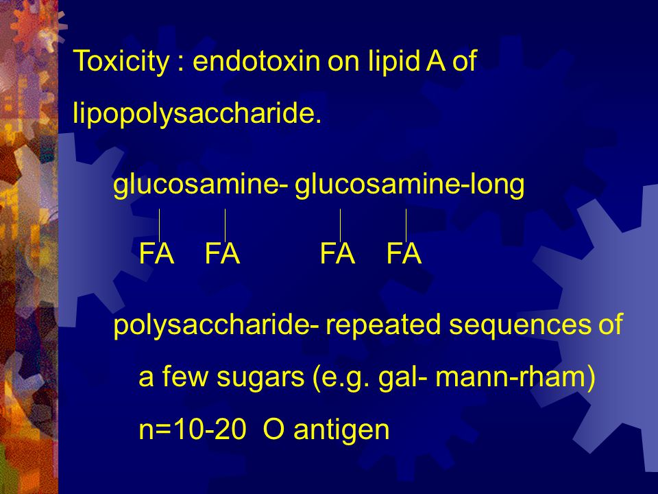 Toxicity : endotoxin on lipid A of lipopolysaccharide.