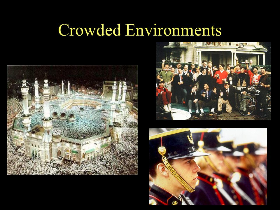 Crowded Environments