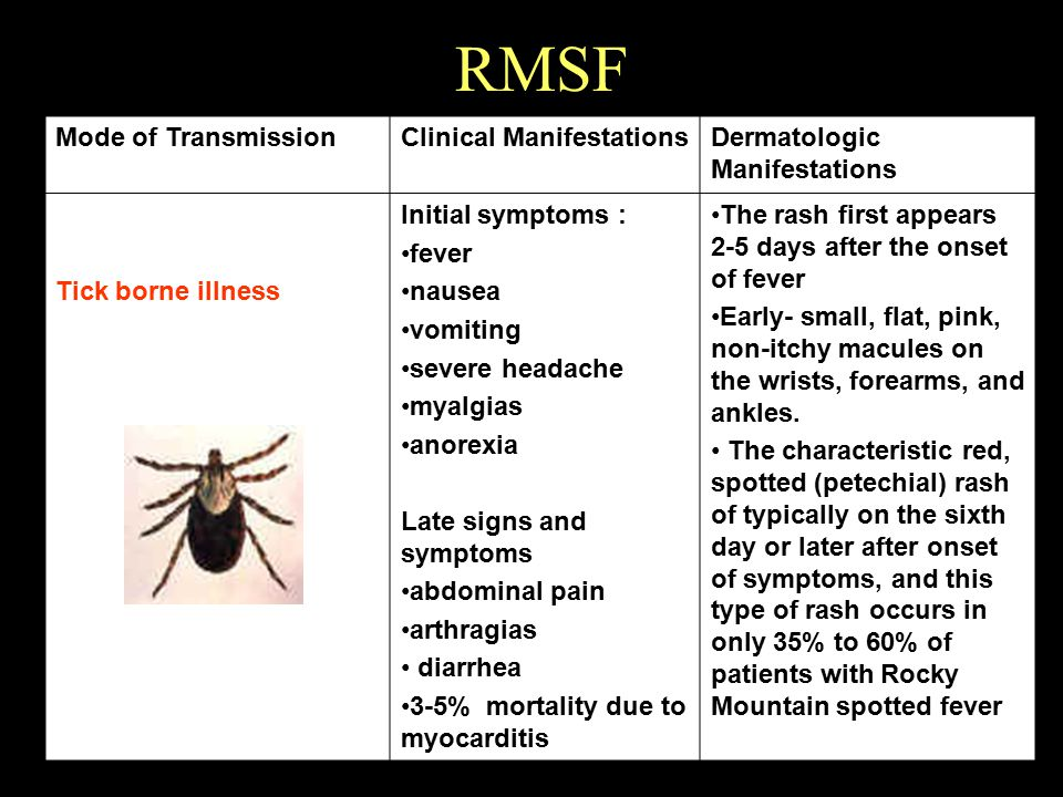 RMSF Mode of Transmission Clinical Manifestations