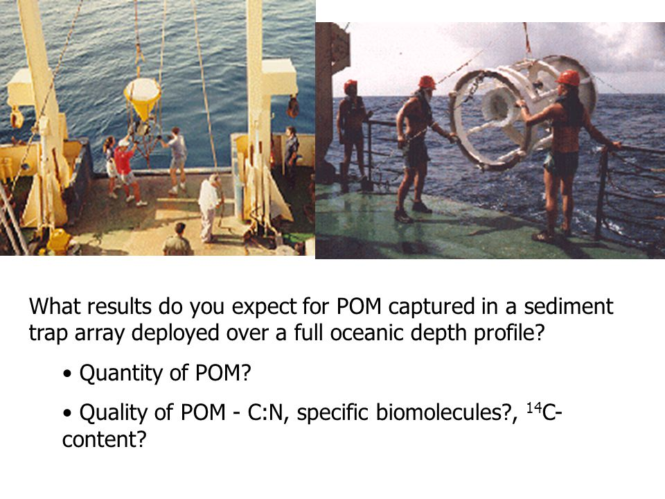 What results do you expect for POM captured in a sediment trap array deployed over a full oceanic depth profile