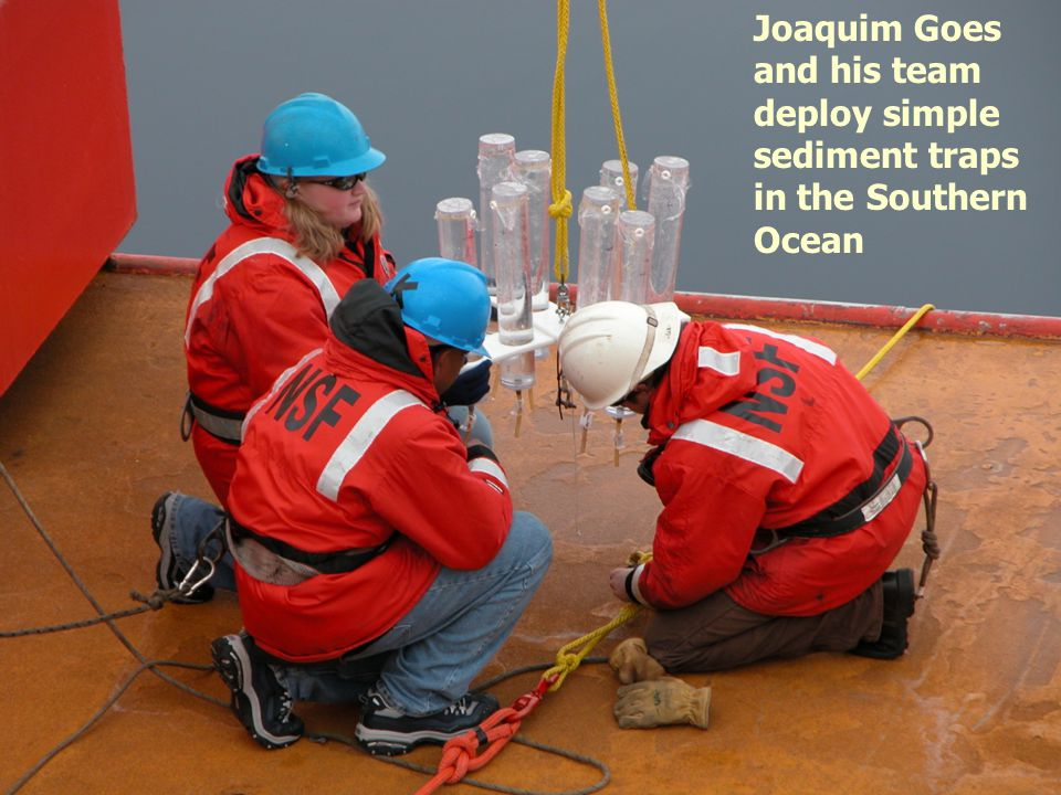 Joaquim Goes and his team deploy simple sediment traps in the Southern Ocean