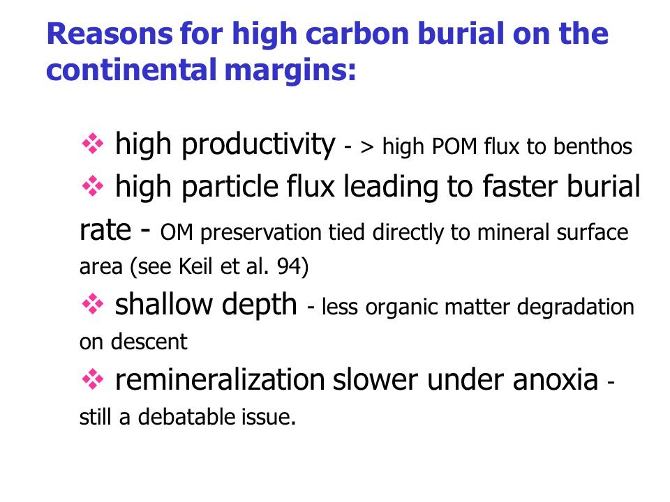 Reasons for high carbon burial on the continental margins: