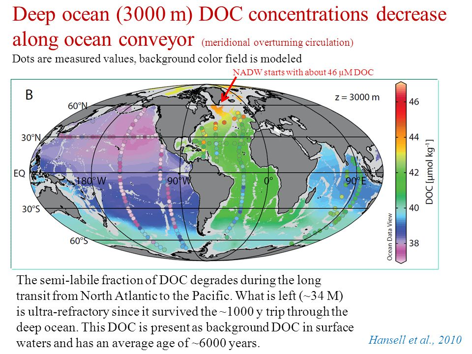 Deep ocean (3000 m) DOC concentrations decrease along ocean conveyor (meridional overturning circulation)