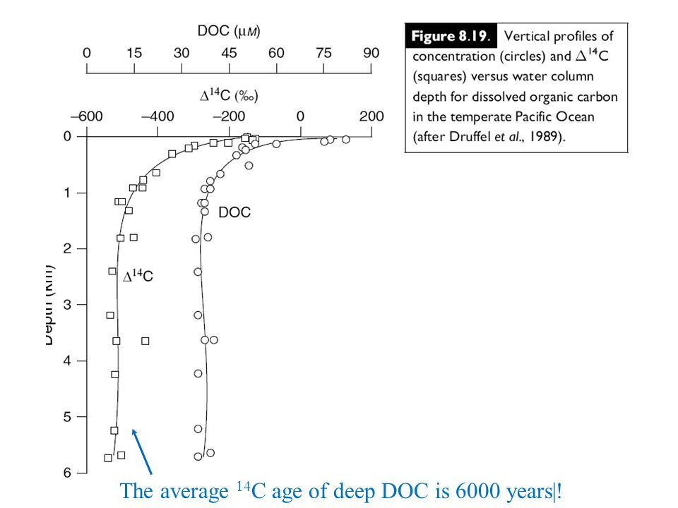 The average 14C age of deep DOC is 6000 years|!