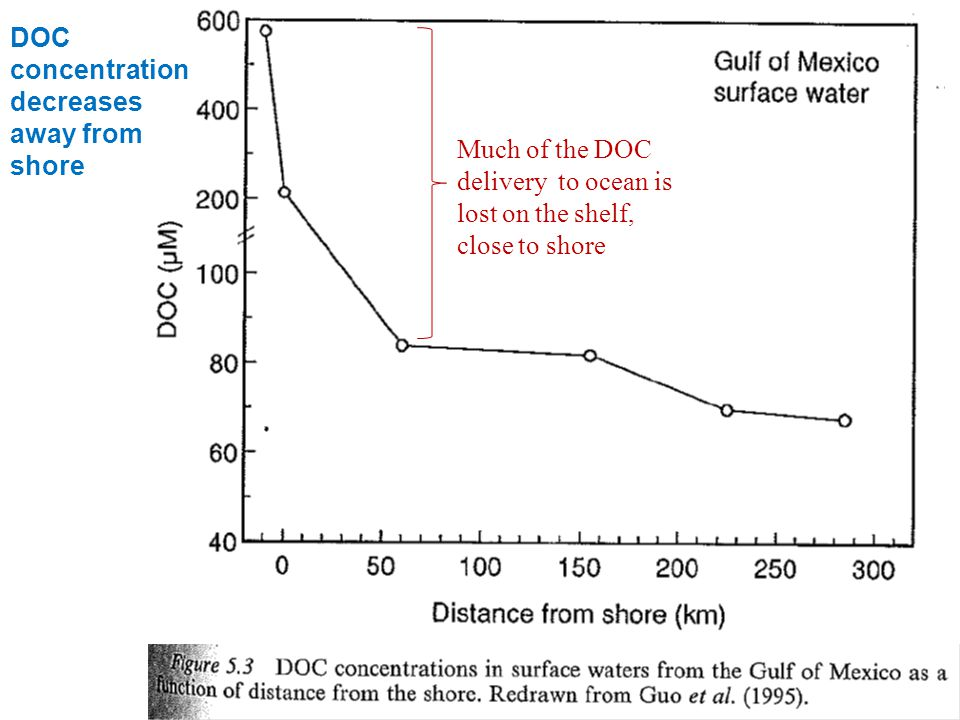 DOC concentration decreases away from shore