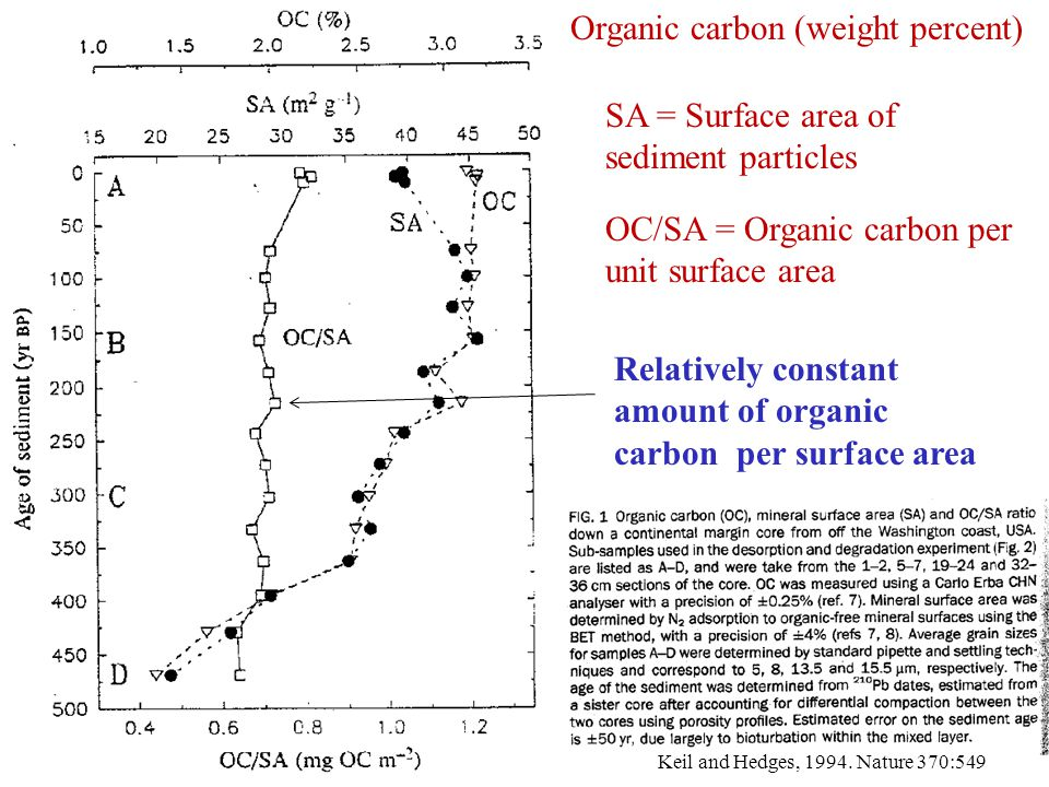 Organic carbon (weight percent)