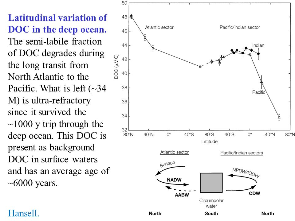 Latitudinal variation of DOC in the deep ocean
