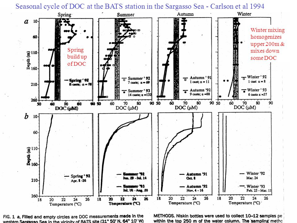 Seasonal cycle of DOC at the BATS station in the Sargasso Sea - Carlson et al 1994