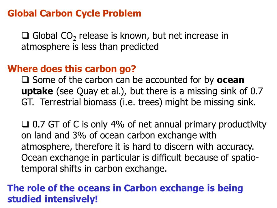 Global Carbon Cycle Problem