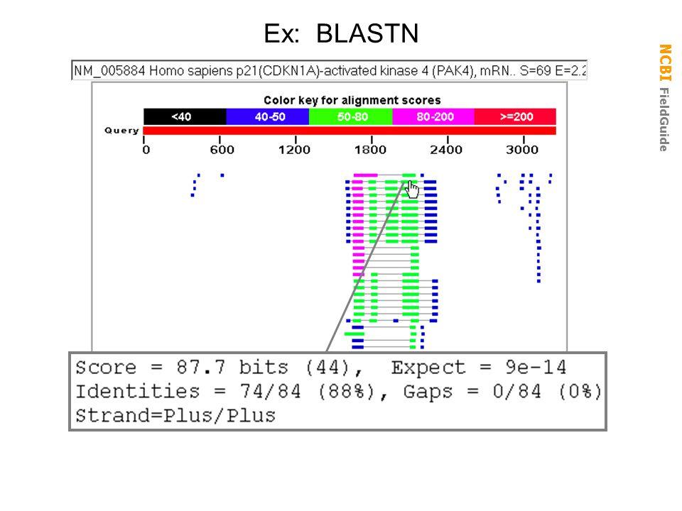 Ex: BLASTN